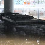 Μετά τις πλημμύρες #2: Φαληρικό Δέλτα, φύκια και μεταξωτές κορδέλες.